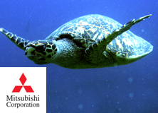 Mitsubishi Corporation: Social Science in the Seychelles